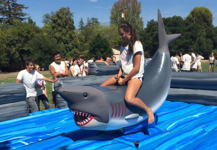 Inflatable Mechanical Shark Ride