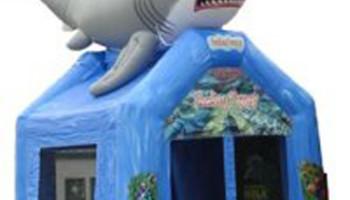 Shark Inflatable Bouncer