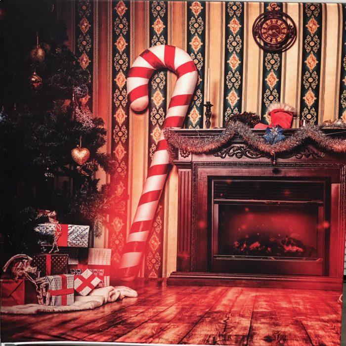 Christmas Holiday Backdrop Photo Booth Rental San Francisco Bay Area