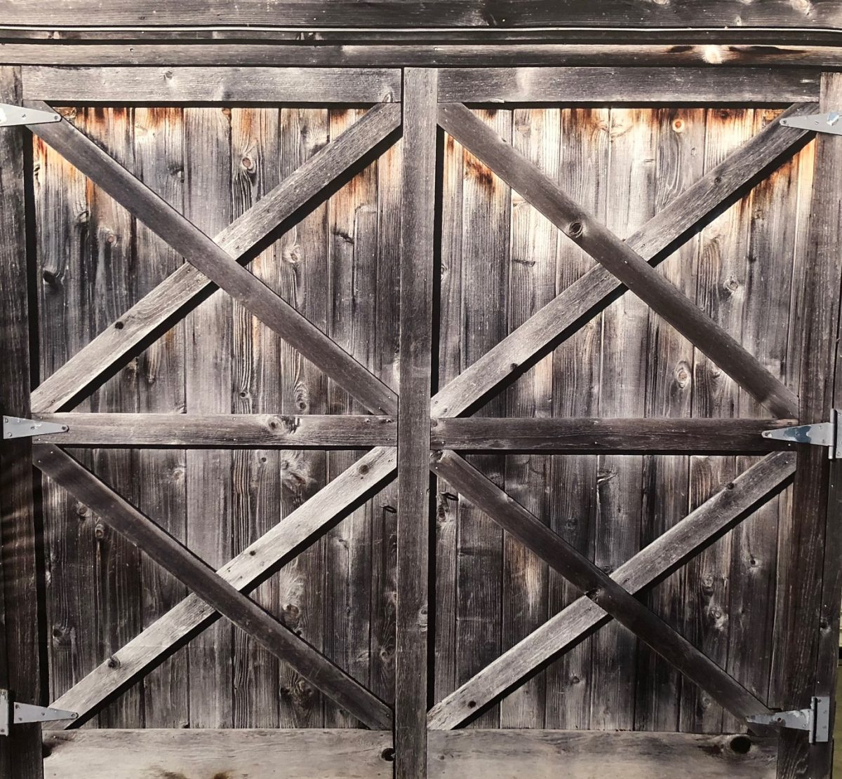Photo Booth Backdrop Rental Western Barn Doors Lets Party