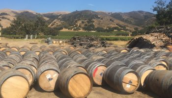 California Wine Barrel Rentals