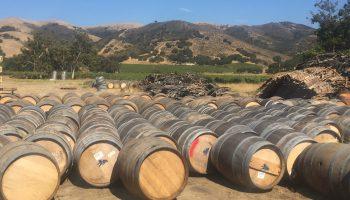California Wine Barrel Rentals