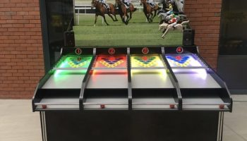 Roll A Ball Horse Racing Carnival Game