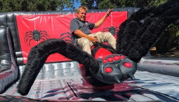 Halloween Mechanical Black Widow Spider Ride