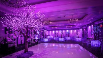 Lighted Trees Event Rentals