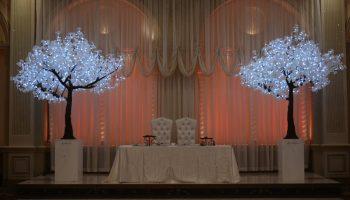 led lighted tree rentals San Francisco