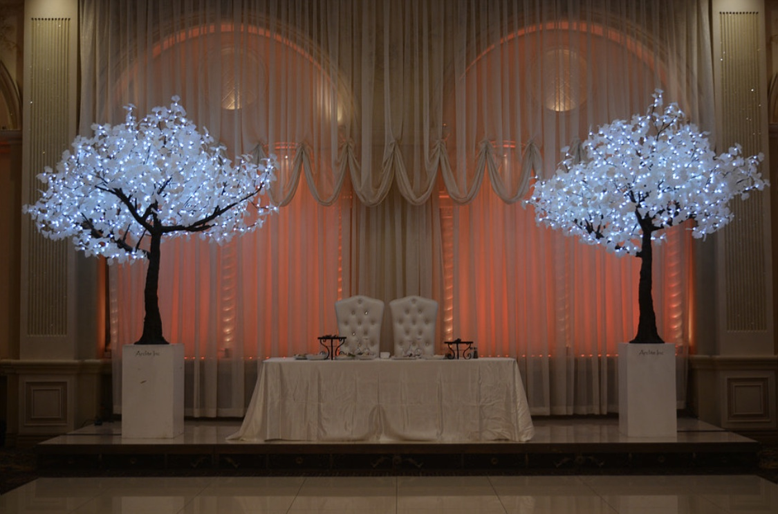 Lighted Trees Event Rentals Led Glowing Lighted Tree