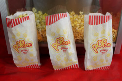 popcorn machine rental movie night