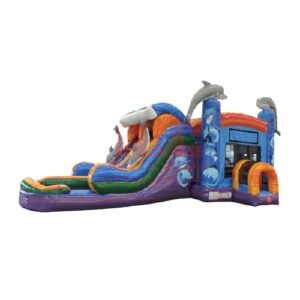 Inflatable Water Jump House Rental